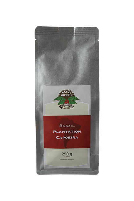 Brazil Plantation Capoeira